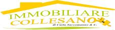 www.immobiliare-collesano.it